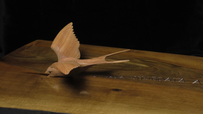 Swallow Table - detail